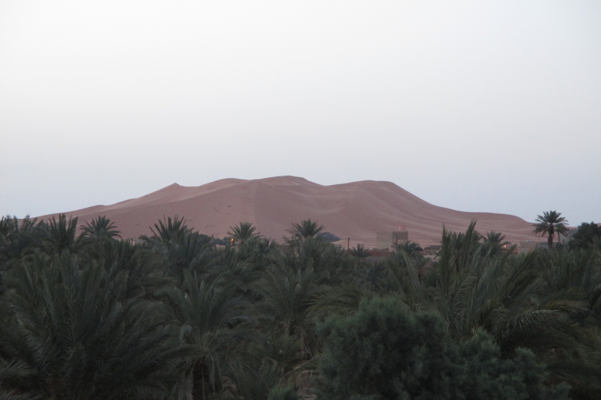 Die Dünen des Erg Chebbi