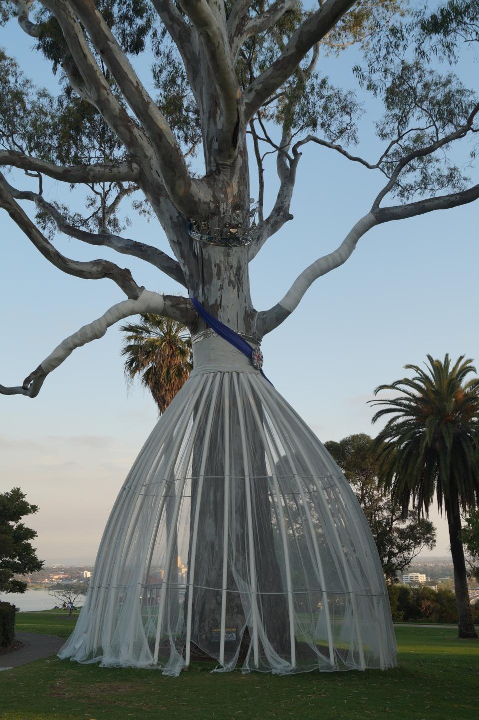 Queen's Tree