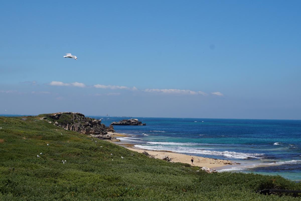 atmen, einfach atmen und püren, dass man lebt. Australien macht es mir leicht.