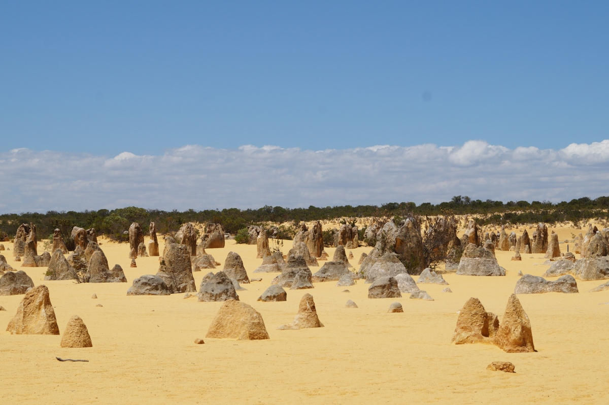 Nambung Nationalpark, Pinnacles