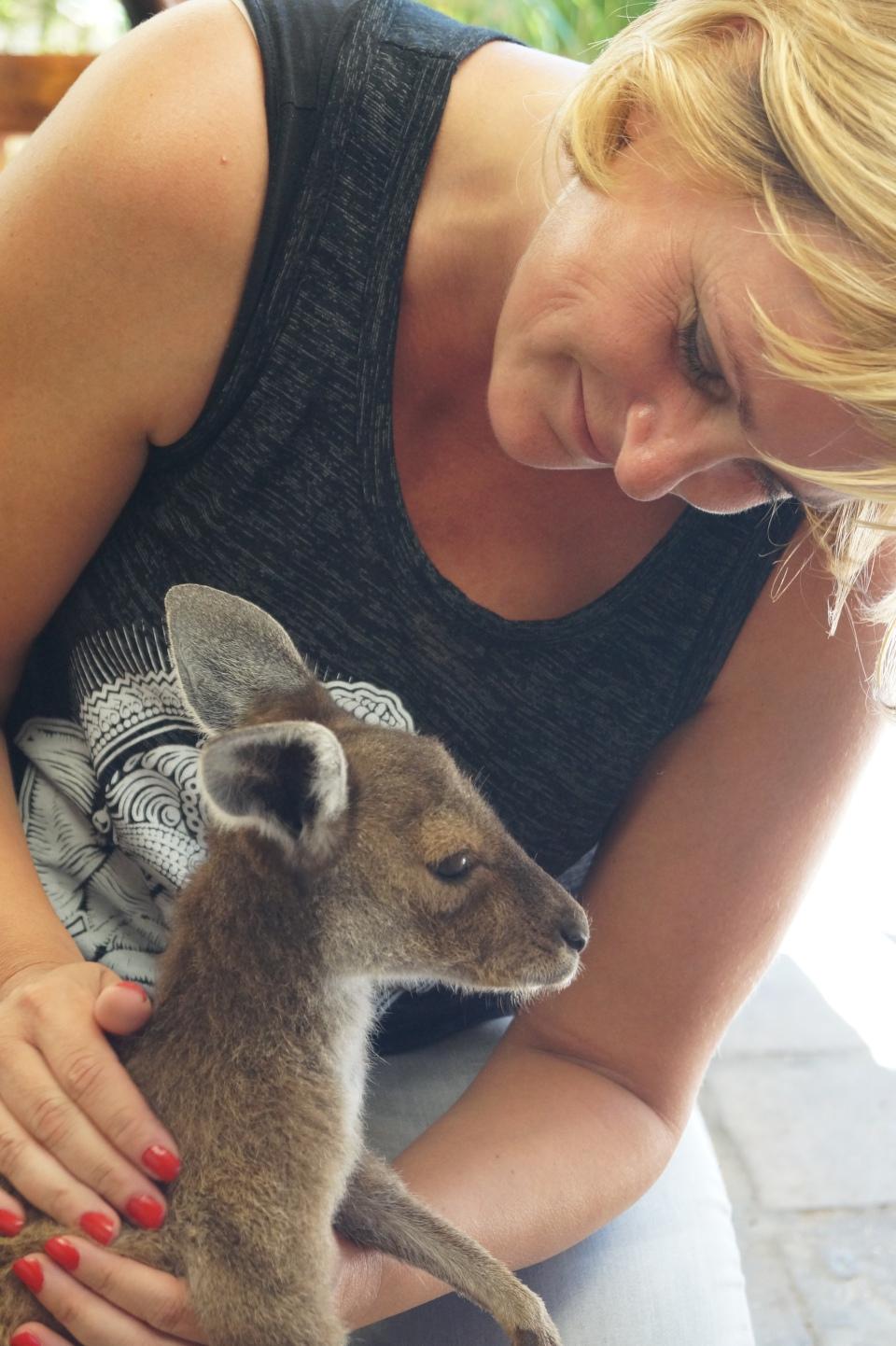 Känguru Liebe